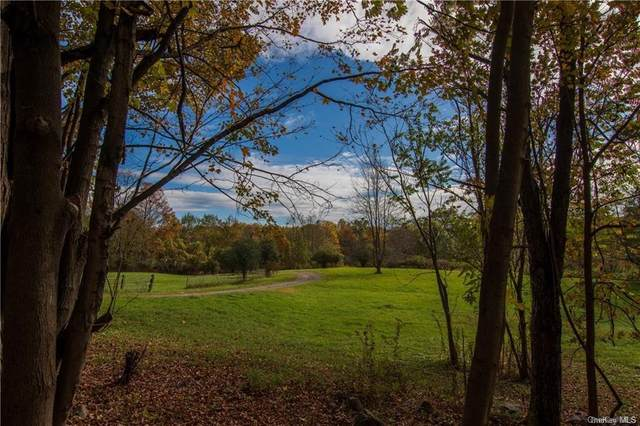 686 Route 17M, Wallkill Town, NY 10940 (MLS #H6040403) :: The McGovern Caplicki Team