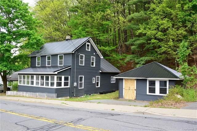 280 Canal Street, Wawarsing, NY 12428 (MLS #H6040405) :: Cronin & Company Real Estate