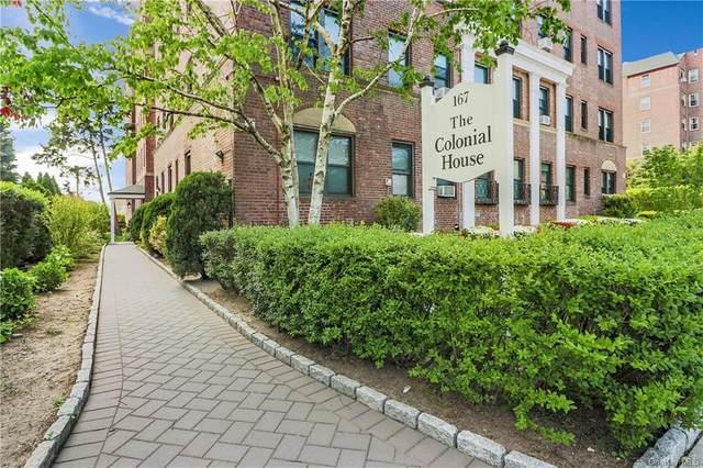 167 Centre Avenue 1E, New Rochelle, NY 10805 (MLS #H6040430) :: Marciano Team at Keller Williams NY Realty