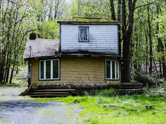 3 S Shore Drive, Wallkill Town, NY 10940 (MLS #H6040451) :: William Raveis Baer & McIntosh