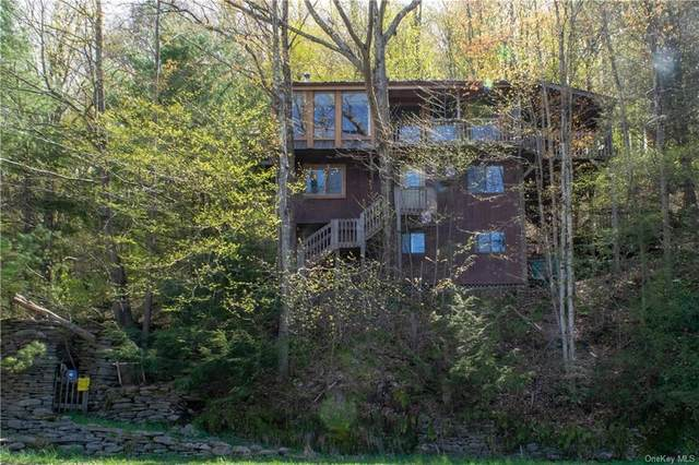 927 Cooks Brook Road, Colchester, NY 12776 (MLS #H6040521) :: Signature Premier Properties