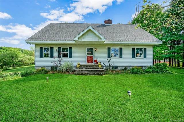 346 Station Road, Lloyd, NY 12528 (MLS #H6040544) :: Cronin & Company Real Estate