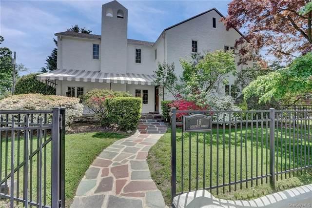 18 Chestnut Avenue, Pelham, NY 10803 (MLS #H6040574) :: Cronin & Company Real Estate