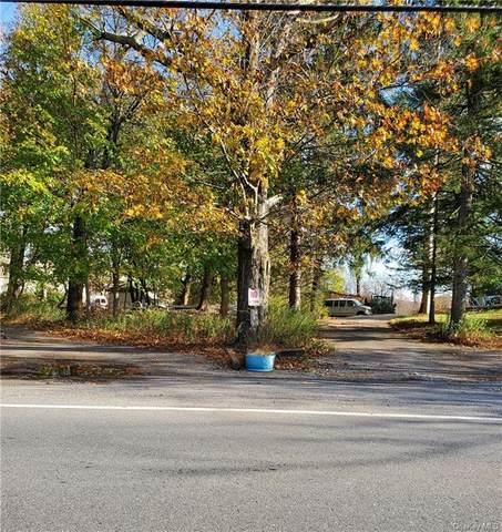 73.9-1-51 Oscawana Lake Road, Putnam Valley, NY 10579 (MLS #H6040602) :: Cronin & Company Real Estate