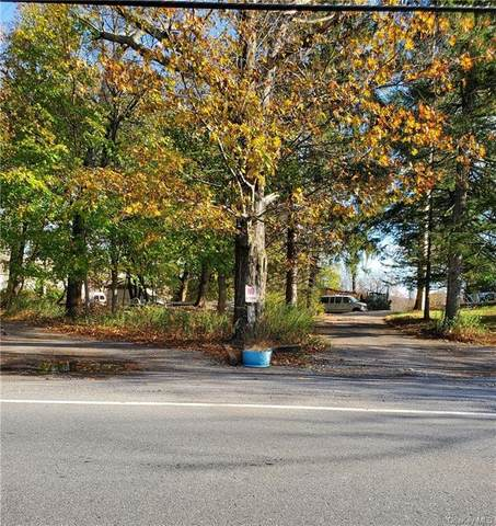 73.9-1-51 Oscawana Lake Road, Putnam Valley, NY 10579 (MLS #H6040602) :: William Raveis Baer & McIntosh