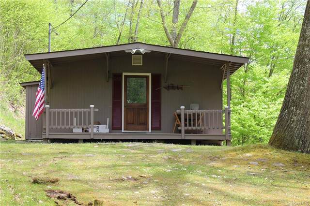 8873 State Highway 30, Downsville, NY 13755 (MLS #H6040651) :: Keller Williams Points North - Team Galligan