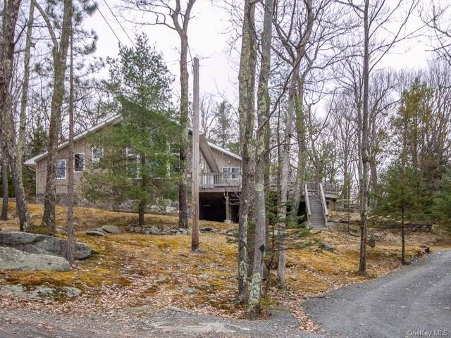 223 Canal Road, Mamakating, NY 12790 (MLS #H6040681) :: William Raveis Legends Realty Group