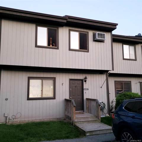 6502 Chelsea Cv N, Beekman, NY 12533 (MLS #H6040718) :: Kendall Group Real Estate | Keller Williams