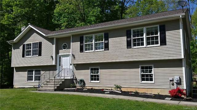 83 O Halloran Circle, Pleasant Valley, NY 12569 (MLS #H6040785) :: Signature Premier Properties