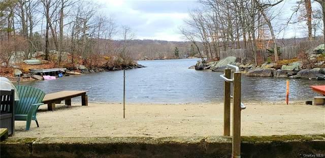 2 Lake Shore Road, Putnam Valley, NY 10579 (MLS #H6040805) :: William Raveis Baer & McIntosh