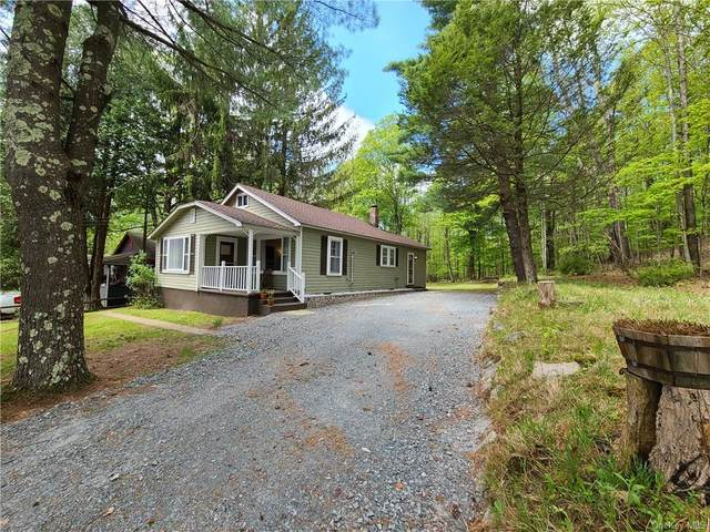 5101 State Route 55, Liberty Town, NY 12734 (MLS #H6040924) :: William Raveis Baer & McIntosh