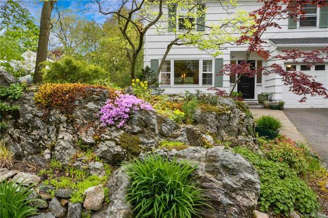 17 Coralyn Avenue, White Plains, NY 10605 (MLS #H6040960) :: William Raveis Legends Realty Group