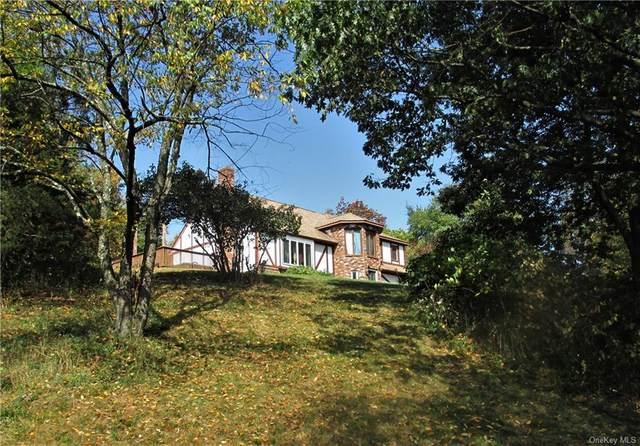 252 Lattintown Road, Marlboro, NY 12542 (MLS #H6041019) :: Signature Premier Properties