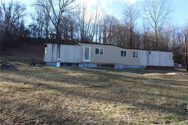 14 Diviesti Drive, Marlboro, NY 12542 (MLS #H6041030) :: Cronin & Company Real Estate