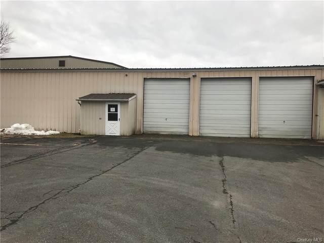 25 Lincoln, Wawarsing, NY 12428 (MLS #H6041050) :: Signature Premier Properties