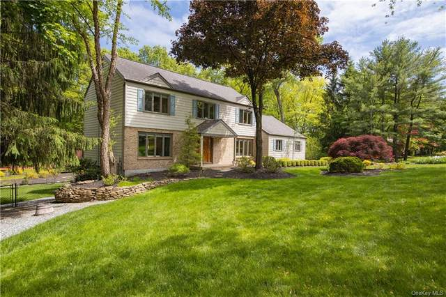 18 Georgetown Oval, Clarkstown, NY 10956 (MLS #H6041121) :: William Raveis Legends Realty Group