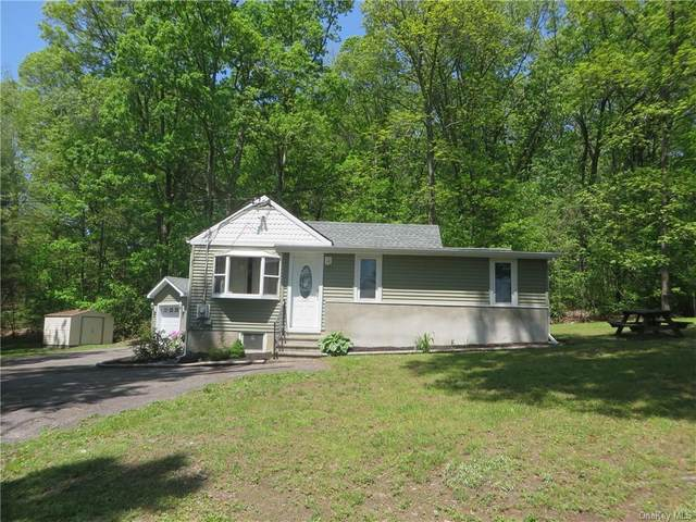 35 Purse Lane, East Fishkill, NY 12533 (MLS #H6041147) :: Mark Boyland Real Estate Team