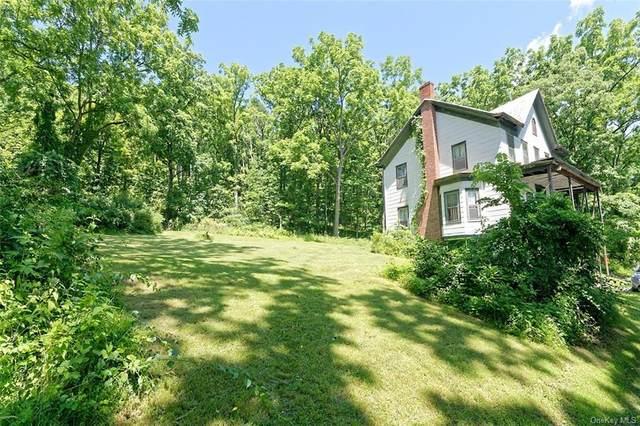 220 Hamburg Road, Catskill, NY 12414 (MLS #H6041156) :: Frank Schiavone with William Raveis Real Estate