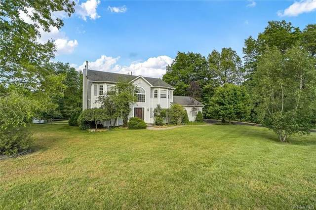 60 James Clark Drive, Wallkill Town, NY 10940 (MLS #H6041168) :: Signature Premier Properties