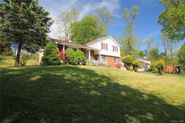 335 Judith Drive, East Fishkill, NY 12582 (MLS #H6041322) :: Mark Boyland Real Estate Team