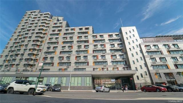 704 Brook Avenue 5M, Bronx, NY 10455 (MLS #H6041353) :: Marciano Team at Keller Williams NY Realty