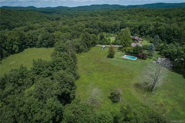 2 Nathan Gold Road, Redding, CT 06896 (MLS #H6041458) :: William Raveis Legends Realty Group