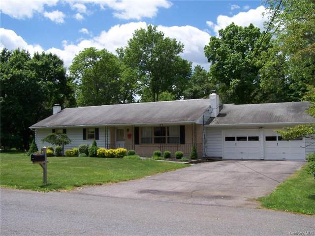 38 Weather Oak Hill Road, New Windsor, NY 12553 (MLS #H6041485) :: Signature Premier Properties
