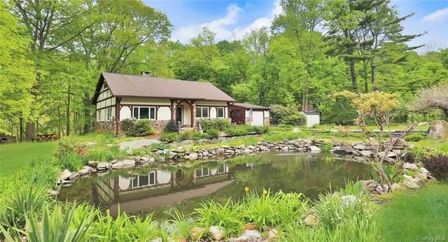 313 Farm To Market Road, Patterson, NY 10509 (MLS #H6041502) :: Signature Premier Properties