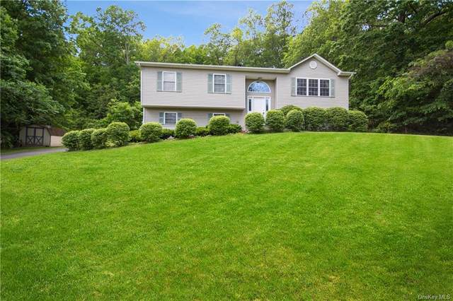 53 Clove Branch Road, East Fishkill, NY 12533 (MLS #H6041513) :: William Raveis Legends Realty Group