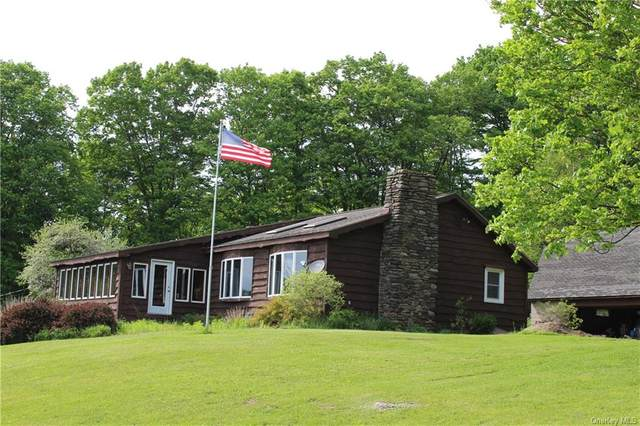 291 Franskevicz Road, Hancock, NY 13783 (MLS #H6041535) :: Cronin & Company Real Estate
