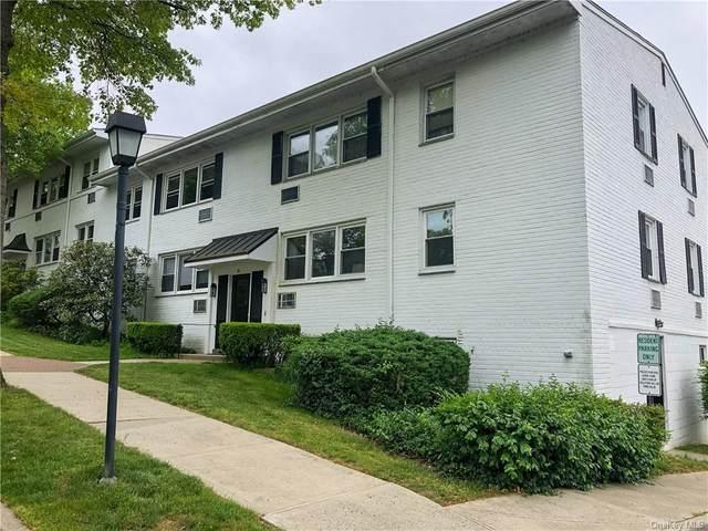 95 Avon Circle C, Rye Town, NY 10573 (MLS #H6041547) :: William Raveis Baer & McIntosh