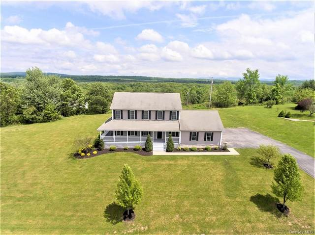 1 Chiefs Lane, Newburgh Town, NY 12586 (MLS #H6041613) :: Signature Premier Properties