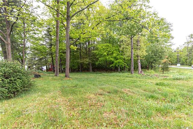 Lake Shore Drive E, Thompson, NY 12775 (MLS #H6041660) :: Signature Premier Properties