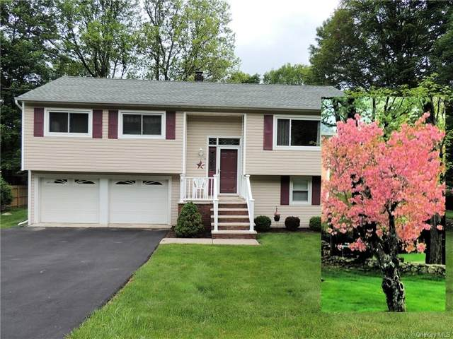 73 Birchwood Drive, Woodbury Town, NY 10930 (MLS #H6041875) :: William Raveis Baer & McIntosh