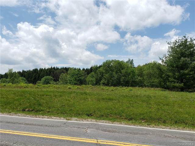 Co Hwy 14, Bethel, NY 12720 (MLS #H6041892) :: Mark Boyland Real Estate Team