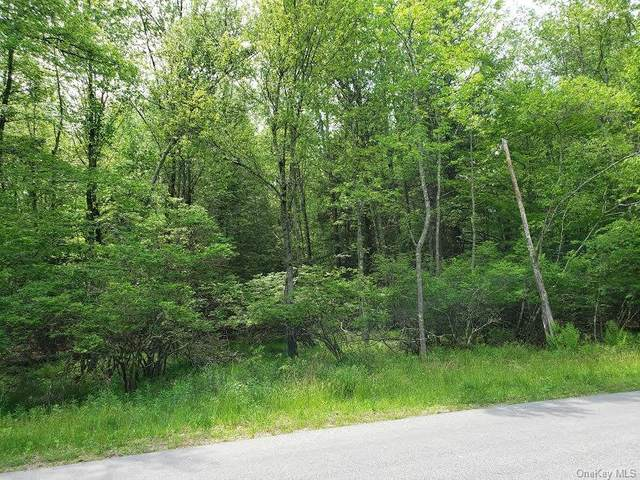 400 Pine Grove Road Tr 45, Bethel, NY 12720 (MLS #H6041914) :: Mark Boyland Real Estate Team