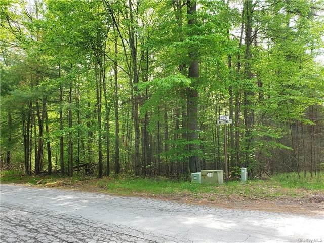 Krystyna Lane Road, Bethel, NY 12720 (MLS #H6041917) :: McAteer & Will Estates | Keller Williams Real Estate