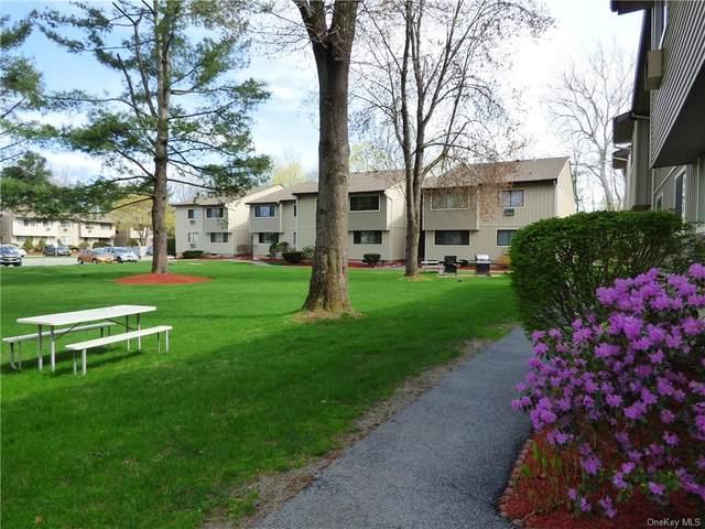 34 Patterson Village Court, Patterson, NY 12563 (MLS #H6041920) :: Mark Boyland Real Estate Team
