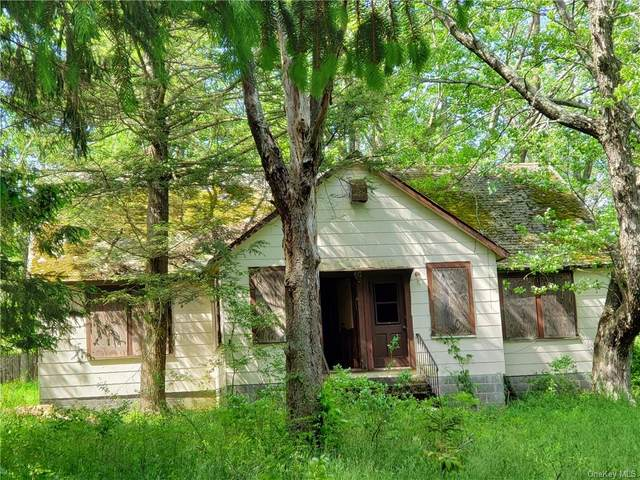 42 Hillside, Thompson, NY 12701 (MLS #H6041934) :: Cronin & Company Real Estate