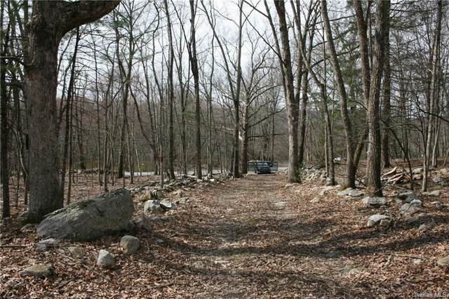 South Road, Mamakating, NY 12790 (MLS #H6041974) :: Cronin & Company Real Estate