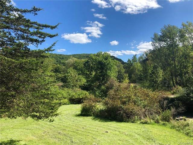 303 Sugarloaf Mountain Road, Chester Town, NY 10918 (MLS #H6041983) :: Marciano Team at Keller Williams NY Realty