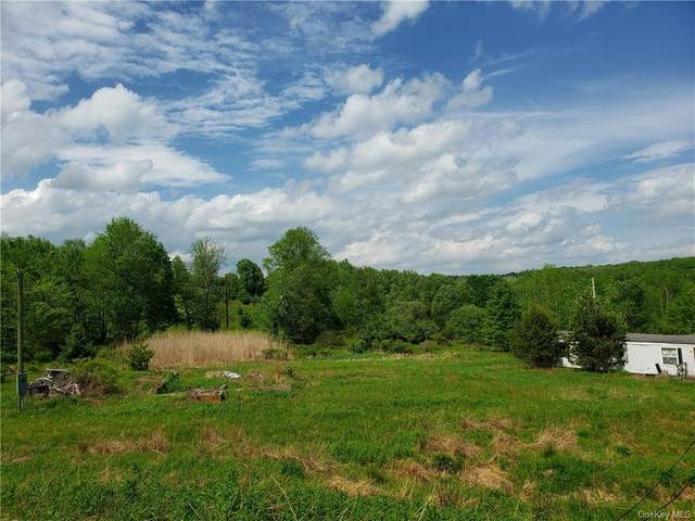 1208 Nys Hwy 17B, Bethel, NY 12720 (MLS #H6042059) :: Mark Boyland Real Estate Team