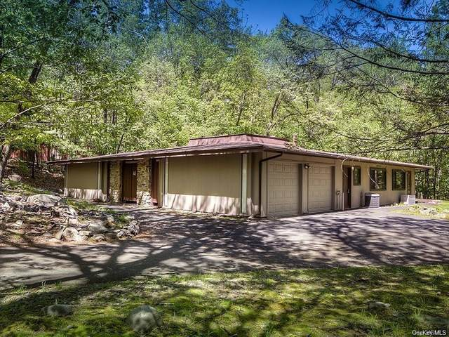 46 Halley Drive, Haverstraw Town, NY 10970 (MLS #H6042070) :: Signature Premier Properties