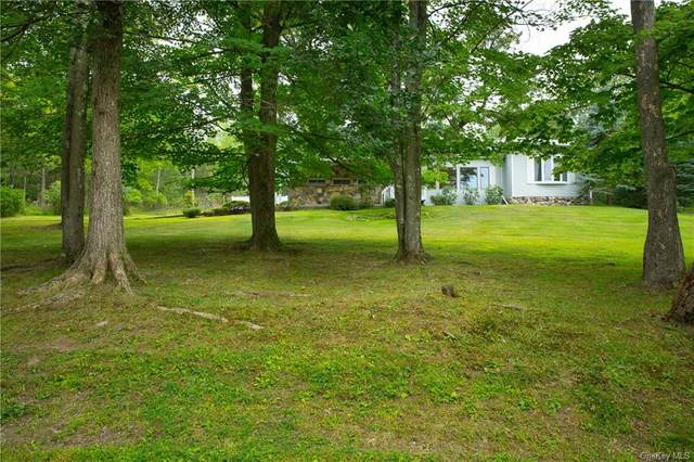 69 Hawxhurst Road, Monroe Town, NY 10950 (MLS #H6042130) :: Signature Premier Properties
