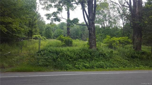 267 Ferndale Road, Liberty Town, NY 12734 (MLS #H6042310) :: Mark Seiden Real Estate Team