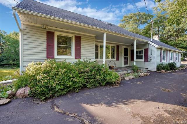 224 Mine Road, Monroe Town, NY 10950 (MLS #H6042335) :: Signature Premier Properties