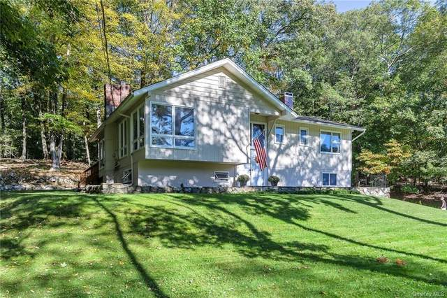 233 Bull Mill Road, Chester Town, NY 10918 (MLS #H6042337) :: William Raveis Baer & McIntosh