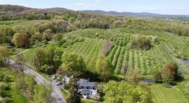 184 Plattekill Road, Marlboro, NY 12542 (MLS #H6042490) :: Signature Premier Properties
