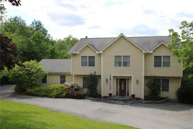 61 Warford Road, Minisink, NY 10998 (MLS #H6042565) :: Mark Boyland Real Estate Team