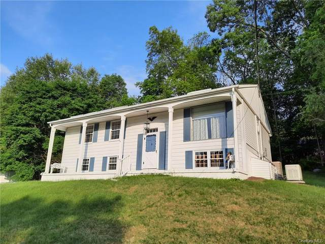 21 Hickory Street, Woodbury Town, NY 10930 (MLS #H6042636) :: William Raveis Baer & McIntosh